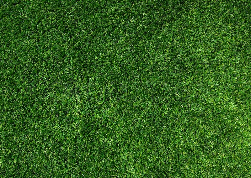 Background Of A Green Grass Texture Green Lawn Stock Photo Colourbox