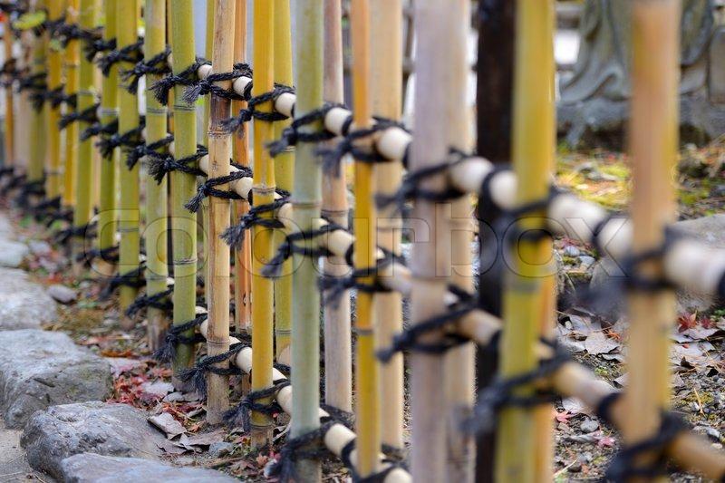 Japanese Style Bamboo Fences Stock Photo Colourbox