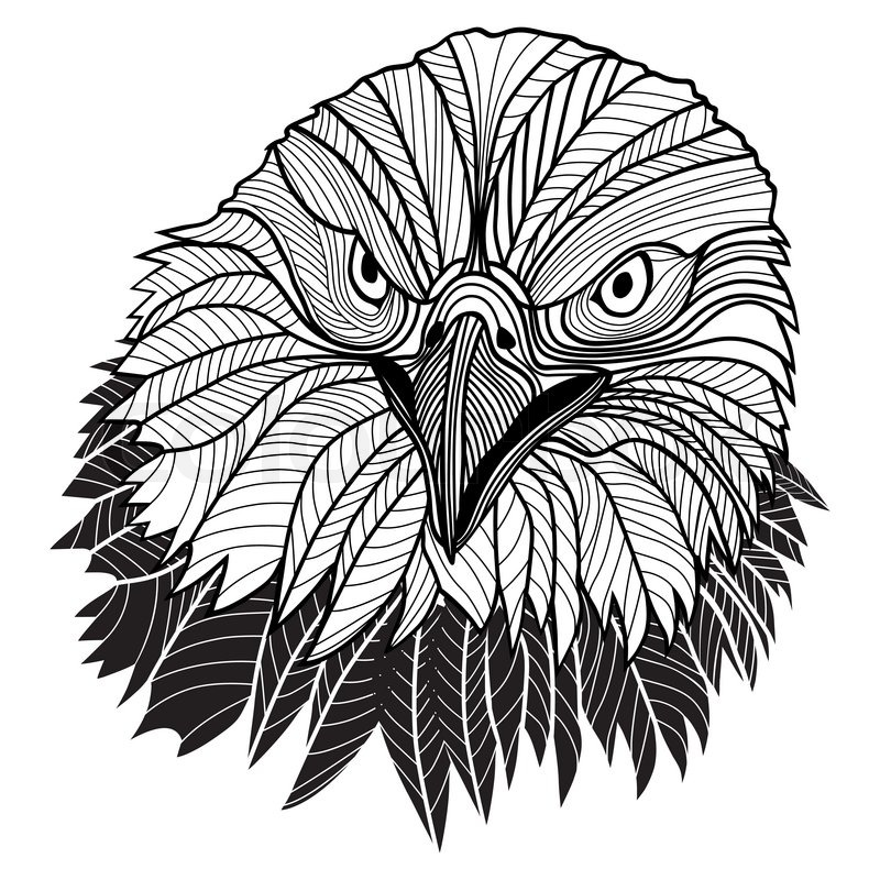 Bird Bald Eagle Head As Usa Symbol For Mascot Or Emblem Design Logo