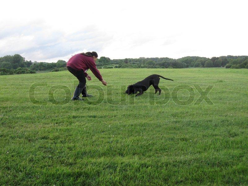 Stock foto af 'Pige der leger med en hund'