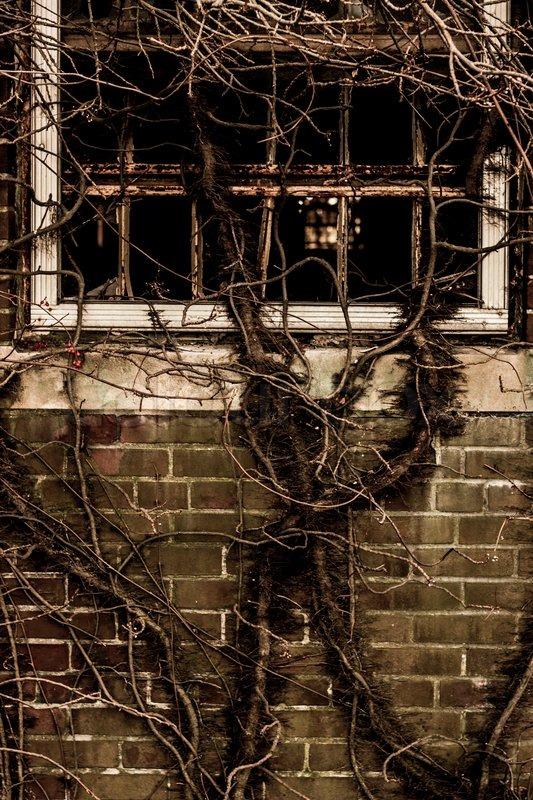 Broken Window Dirt Wall Bricks Background Creepy Concept