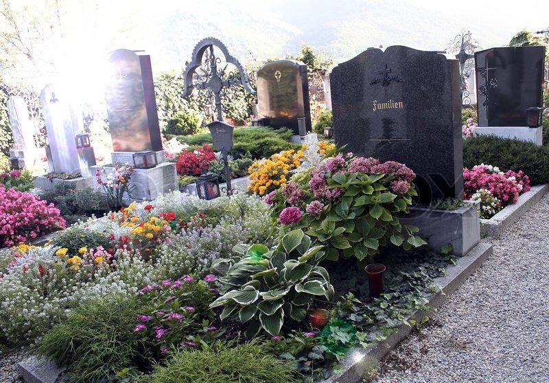 Какие цветы лучше садить на кладбище