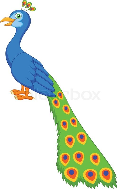 vector illustration of cute peacock stock vector colourbox vector illustration of cute peacock