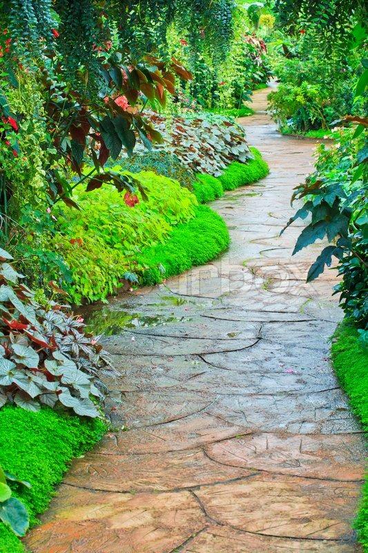 Garden path in Flower garden, stock photo