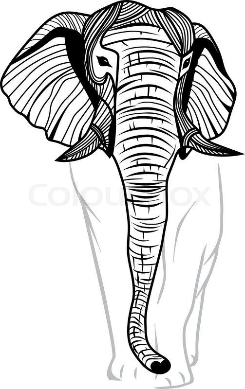 elephant kopf isoliert stock vektor colourbox. Black Bedroom Furniture Sets. Home Design Ideas