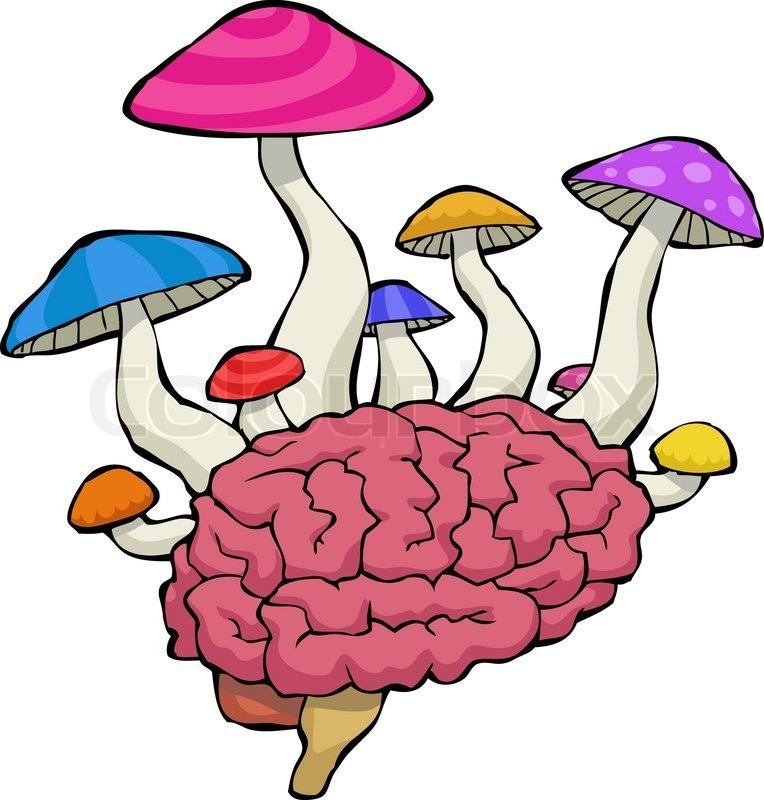 svamp i hjernen