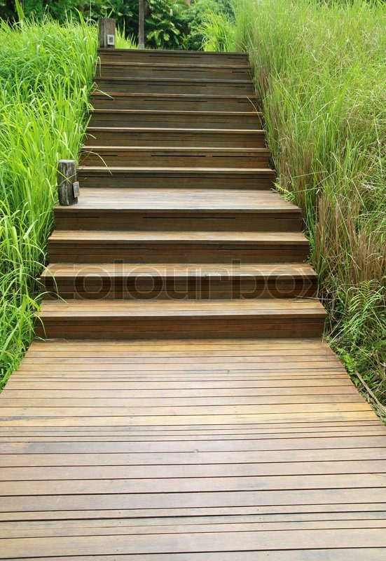 holztreppe weg auf gr nen garten stock foto colourbox. Black Bedroom Furniture Sets. Home Design Ideas