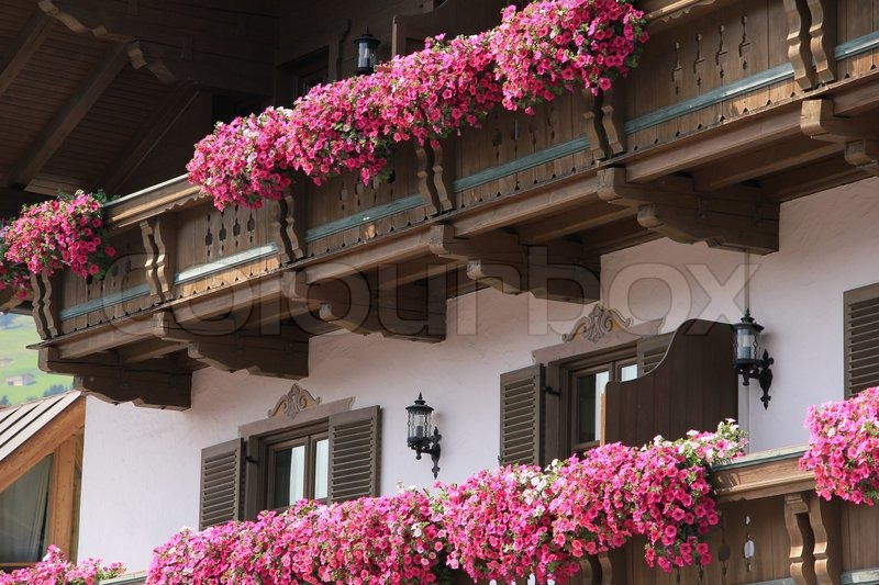 Blooming pink flowers on the balcony in flower boxes of the house in the wonderful summer, stock photo