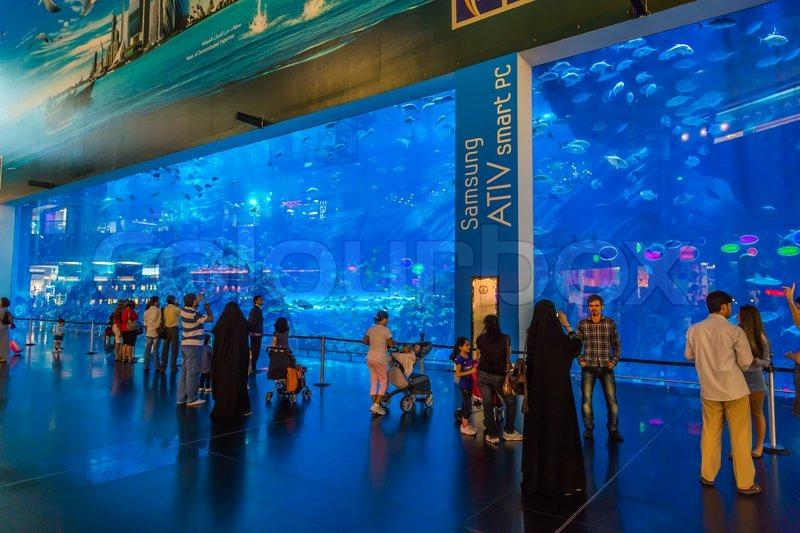 gr tes aquarium der welt in dubai mall stockfoto colourbox. Black Bedroom Furniture Sets. Home Design Ideas