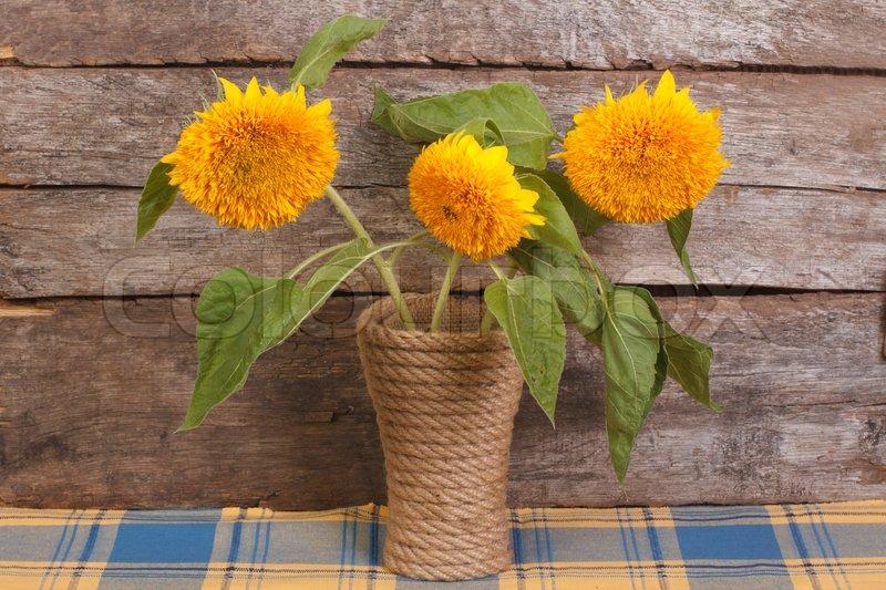 bouquet von gelben bl ten der ornamentalen sonnenblumen in einer vase stockfoto colourbox. Black Bedroom Furniture Sets. Home Design Ideas