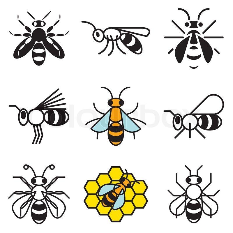 Biene und Honig -Icons | Vektorgrafik | Colourbox