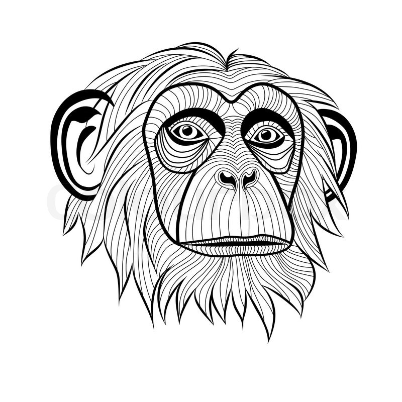 Monkey Chimpanzee Ape Head Animal Simia Troglodytes Symbol For