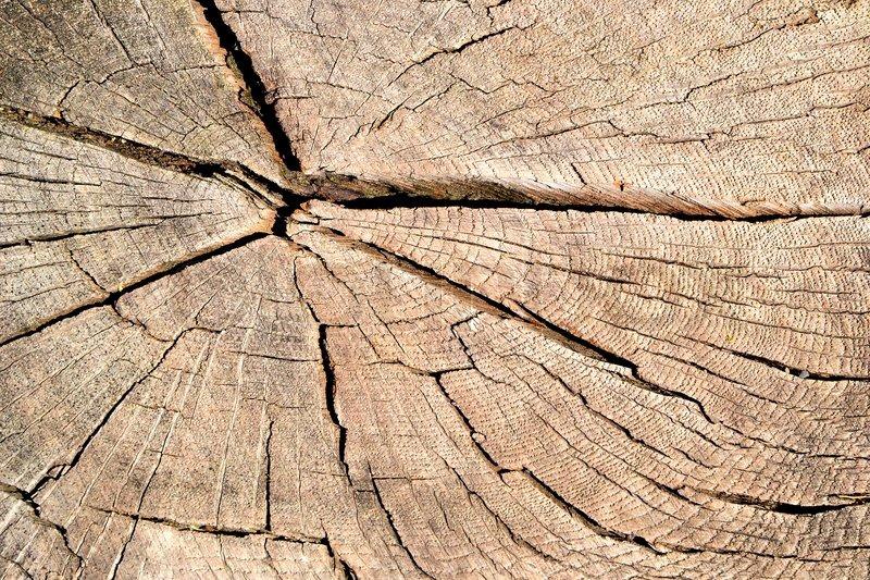 Holz Struktur holzstruktur stockfoto colourbox