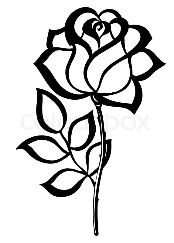 sort silhouet skitse rose isoleret p hvidt stock vektor colourbox. Black Bedroom Furniture Sets. Home Design Ideas