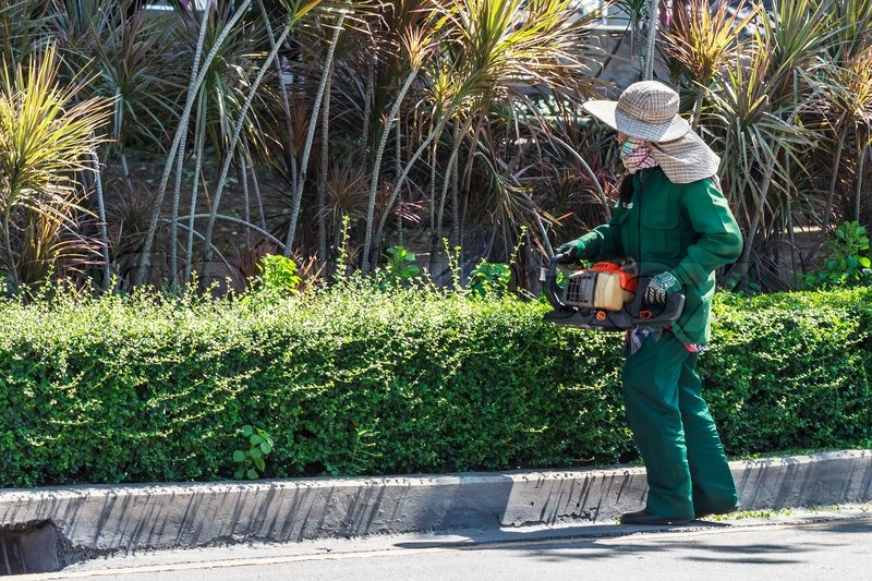 Woman's Trim Bush with Hedge Trimmers