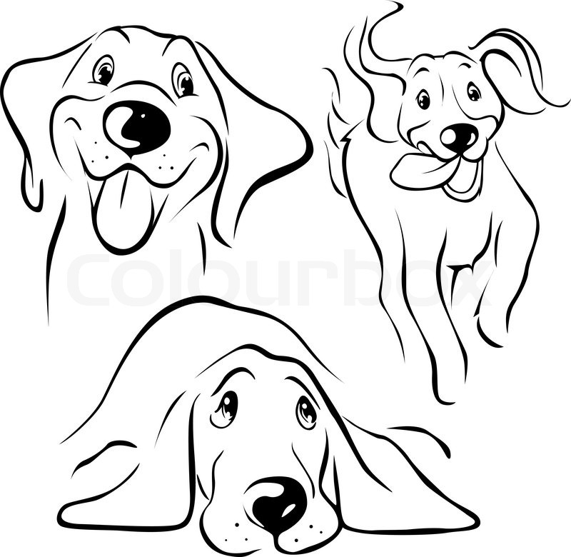 Line Drawing Of A Dog S Face : Nuttet hvid smil stock vektor colourbox
