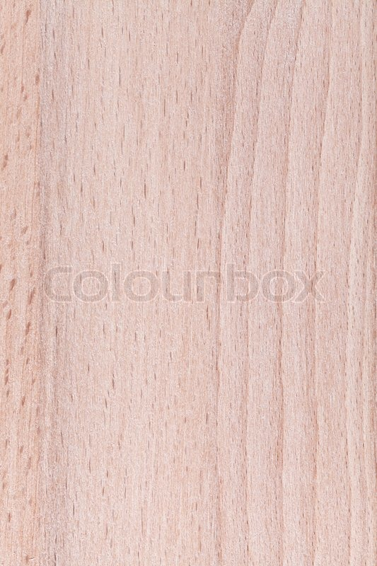 Beech wood furniture plank close up background, stock photo