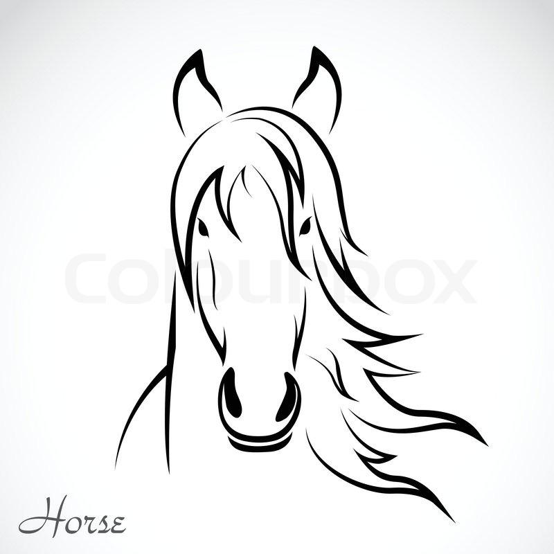 Vektor Bild Von Einem Pferd Vektorgrafik Colourbox