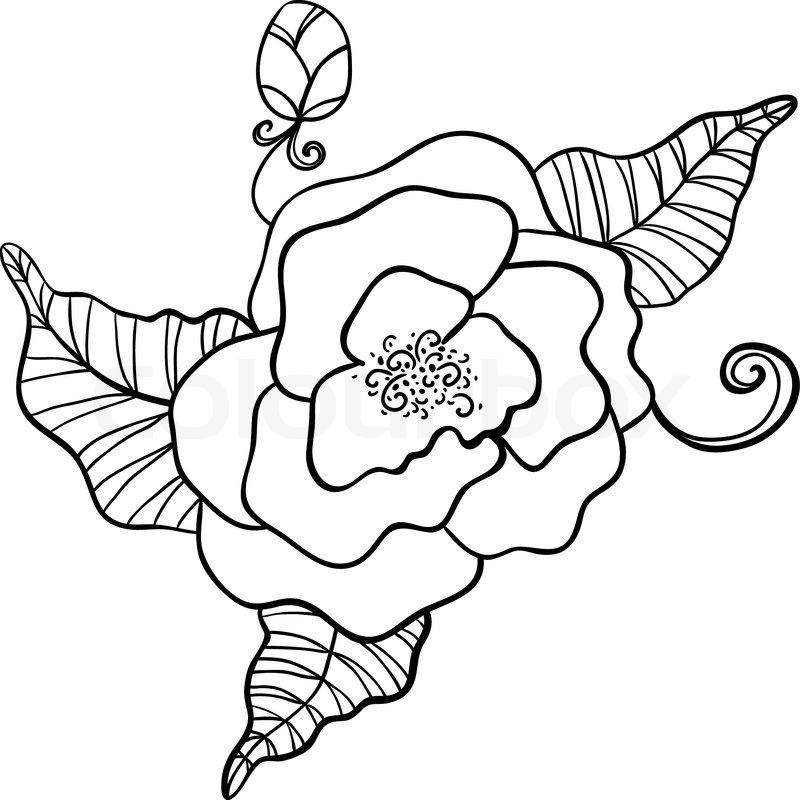 Schwarz -Weiß-Zeichnung von Blumen- | Vektorgrafik | Colourbox
