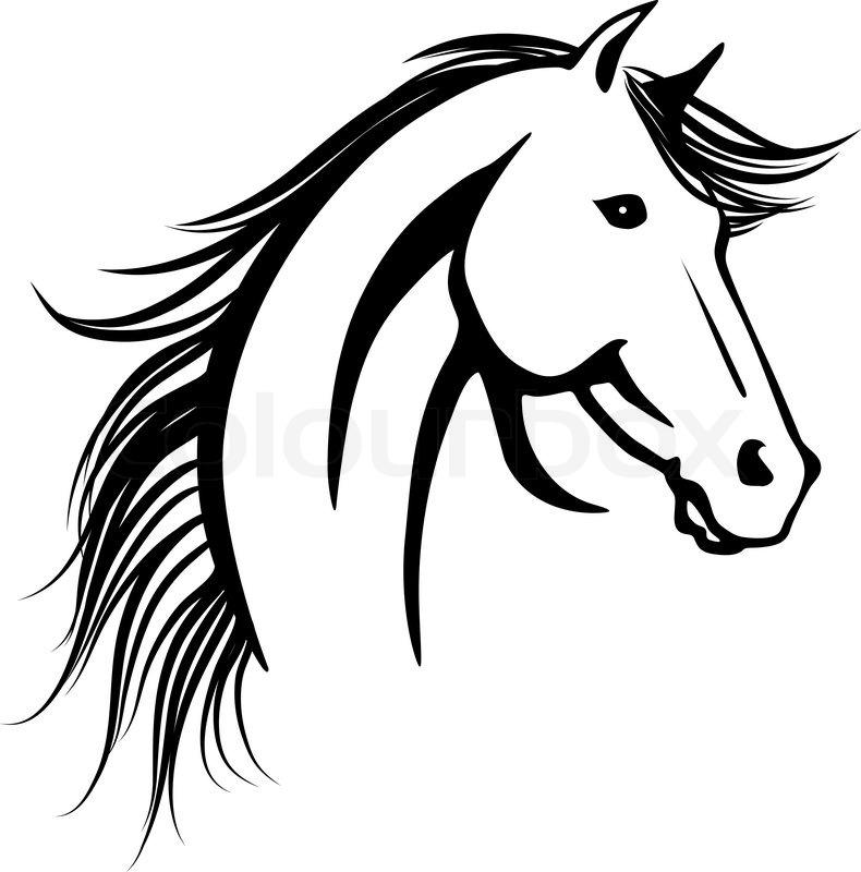 pferdekopf  vektorgrafik  colourbox