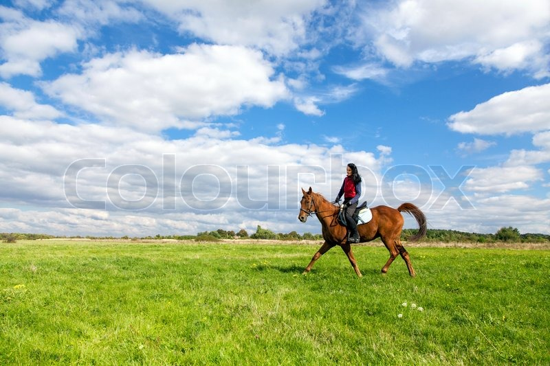 Young woman riding a horse in the countryside, stock photo
