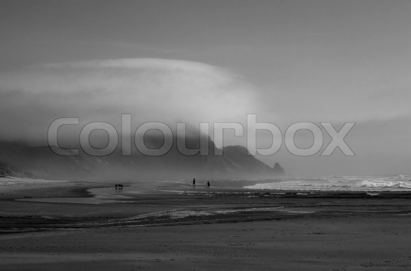 People & dogs on beach in Oregon, stock photo