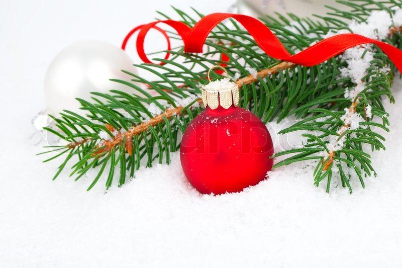 Weihnachtsbaum Ast.Mit Schnee Bedeckt Ast Eines Stock Bild Colourbox