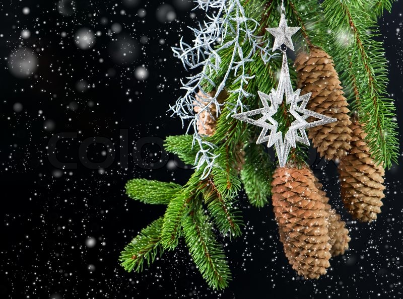 weihnachtsbaum mit gl nzenden silber dekoration stockfoto colourbox. Black Bedroom Furniture Sets. Home Design Ideas
