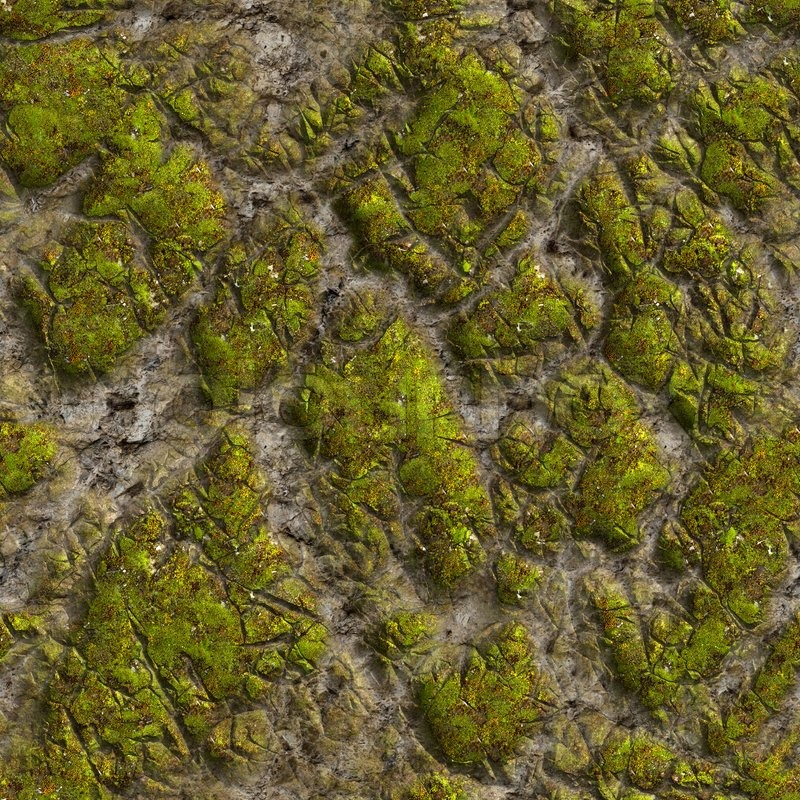 Mossy Stone Seamless Tileable Texture | Stock Photo ...