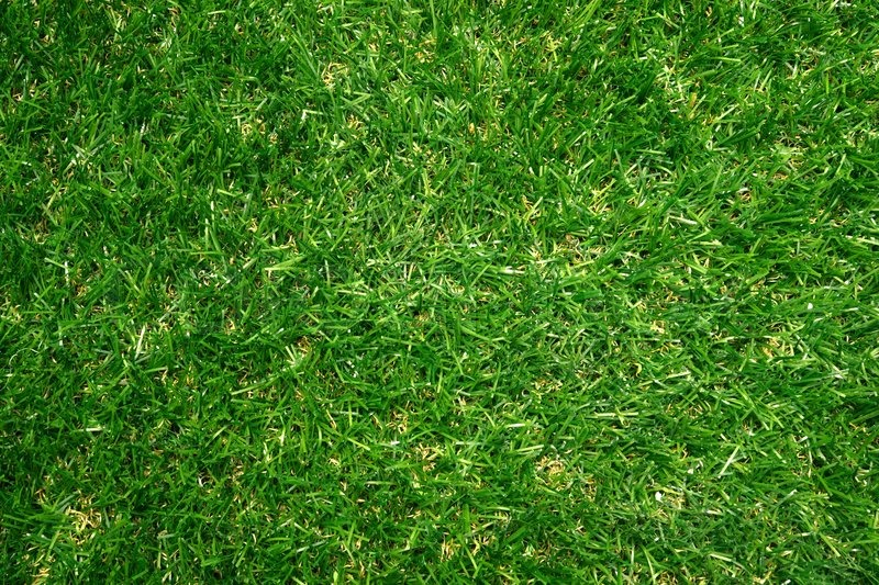 how to create grass ground in revit