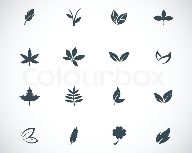 Vector black leaf icons set | Vector | Colourbox