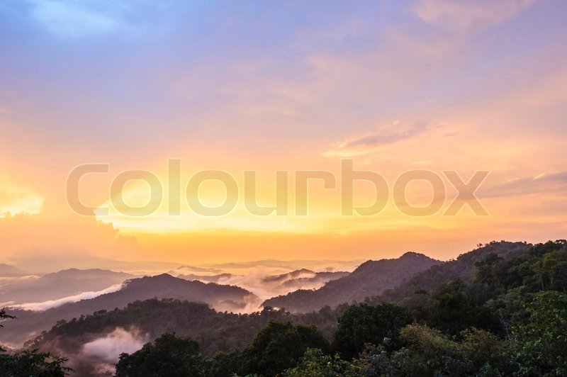 Beautiful twilight landscape in rain forest, Thailand, stock photo