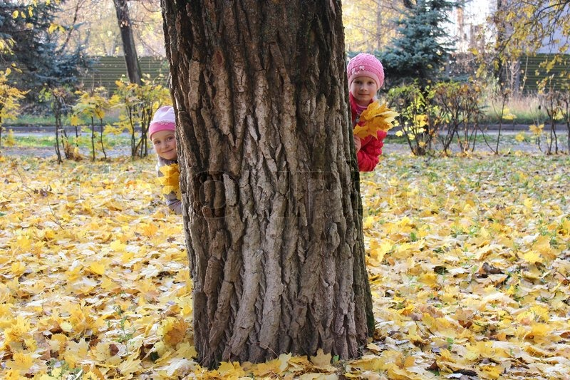 Two Little Girls Hiding Themselves Behind The Tree In The -2516