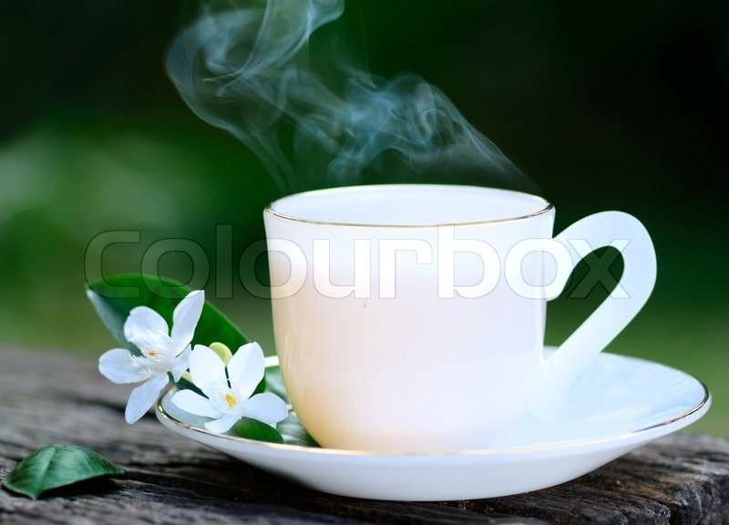 Close up Hot tea with flower in garden, stock photo