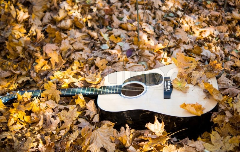 картинки гитара и осень