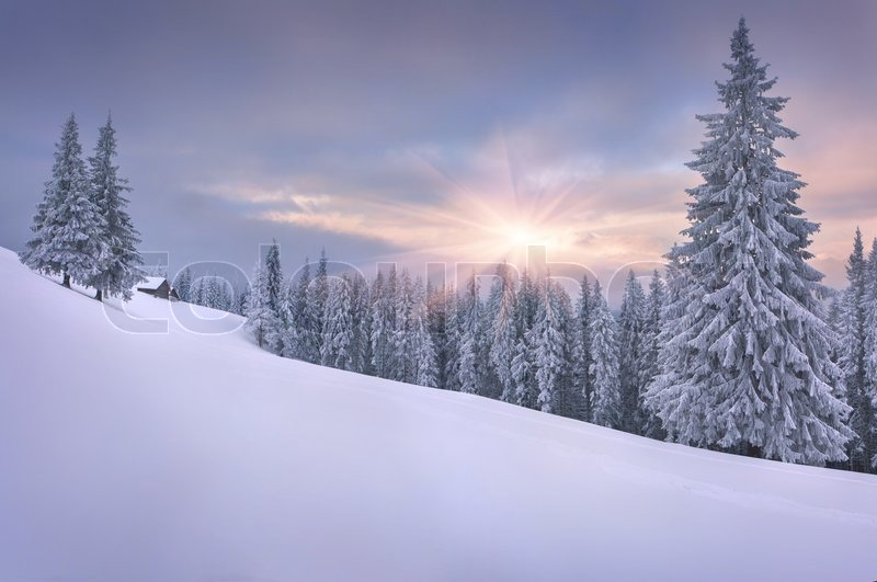 Beautiful Winter Landscape Pictures Gardening Tips For Fall