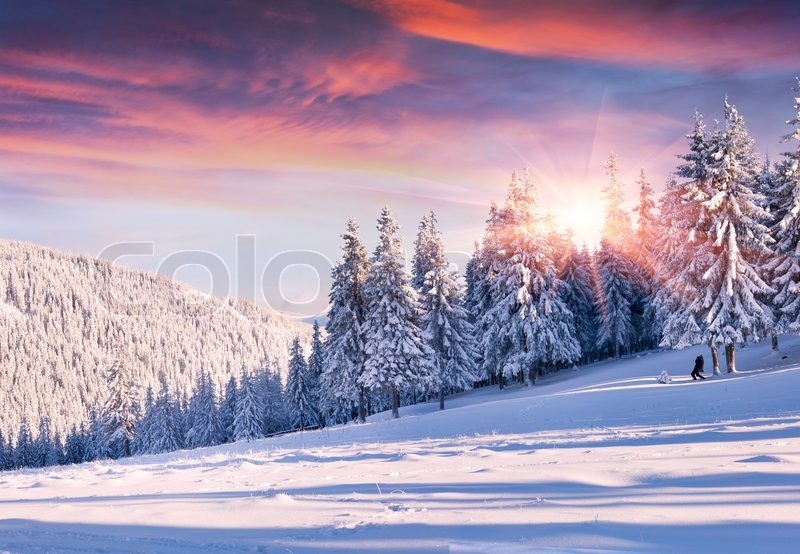 Beautiful Winter Morning With Snow Stock Image Colourbox
