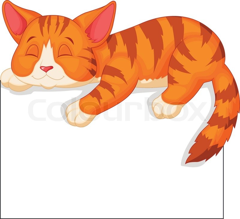 Cat Tail Sleeping