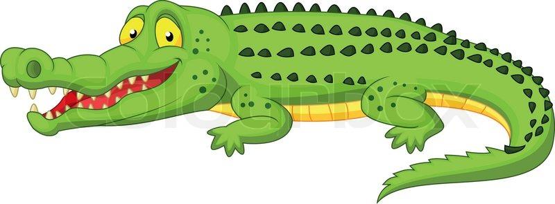 Vector illustration of Crocodile cartoon | Stock Vector ...
