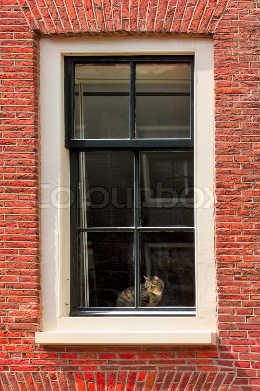 Vertical Oriented Image Of Cat On Windowsill Of Red Brick House In Amsterdam