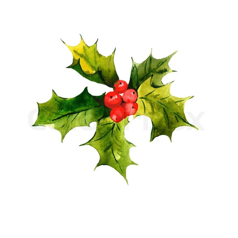 christmas holly watercolor background stock photo