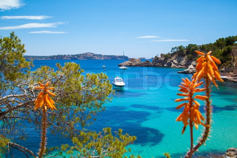 Apartments in majorca with for business visitors and couples on a romantic weekend getaway our apartments in the