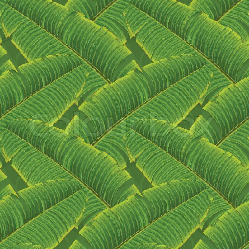 Tropical Banana Leaves Seamless Pattern Vector Eps10