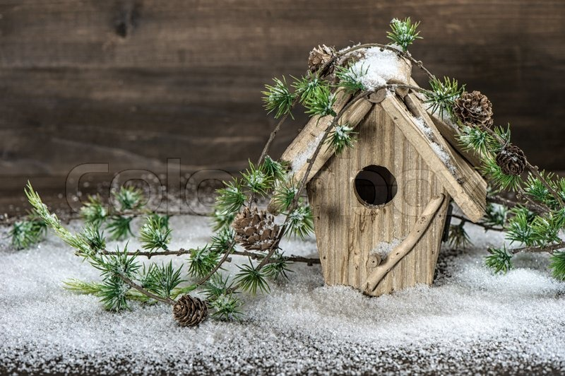 Birdhouse And Christmas Tree Branch Decoration Stock