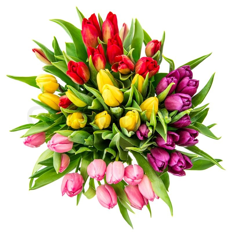 Bouquet Of Fresh Multicolor Tulips Top View Stock Photo