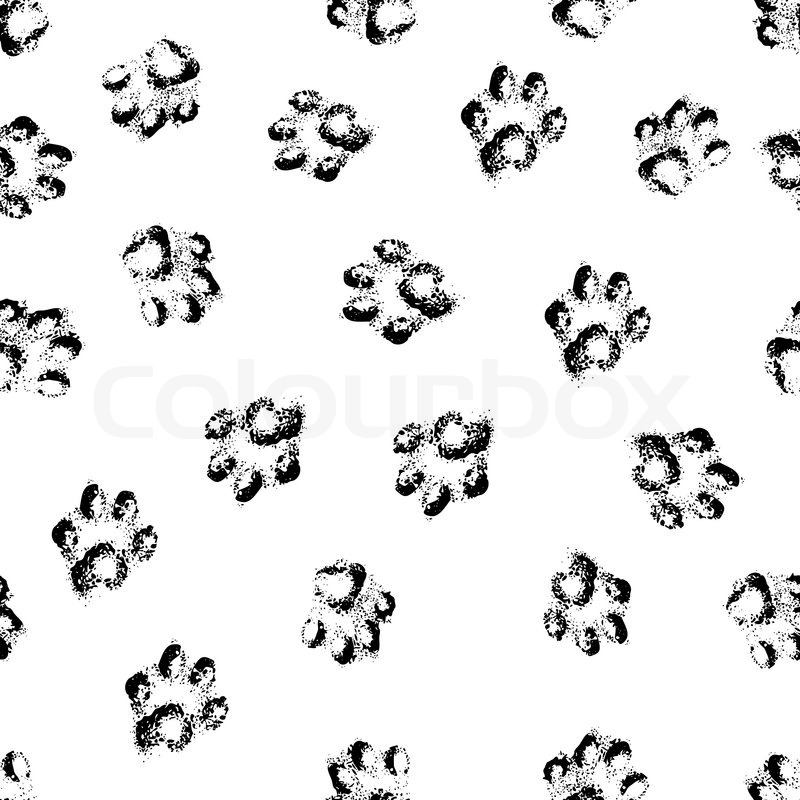 Animal Cat Paw Track Feet Print Icons With Shadow Foot Grunge