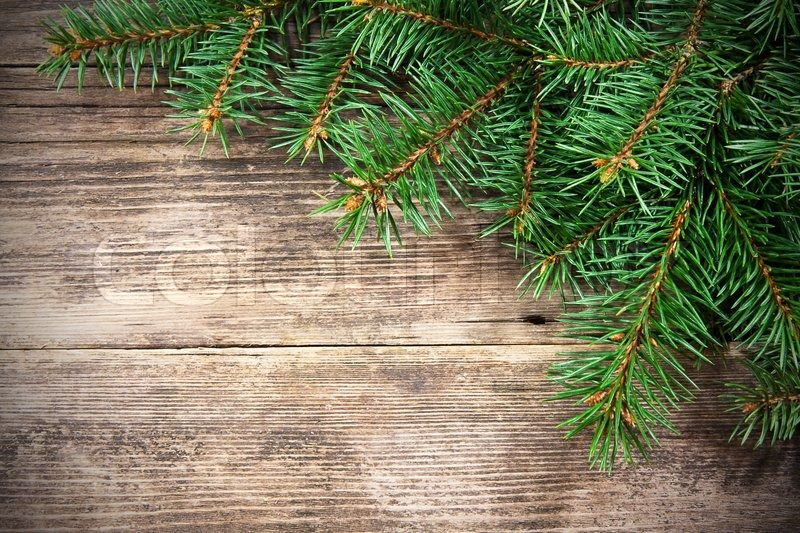 Christmas Fir Tree On A Wooden Stock Photo Colourbox