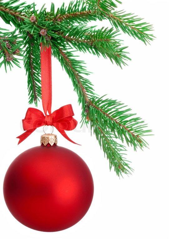 weihnachten kugel h ngt an einem fir ast isoliert auf wei em hintergrund stockfoto colourbox. Black Bedroom Furniture Sets. Home Design Ideas