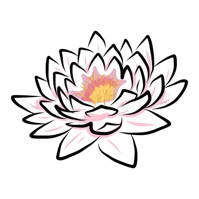 Цветок лотоса в рисунках