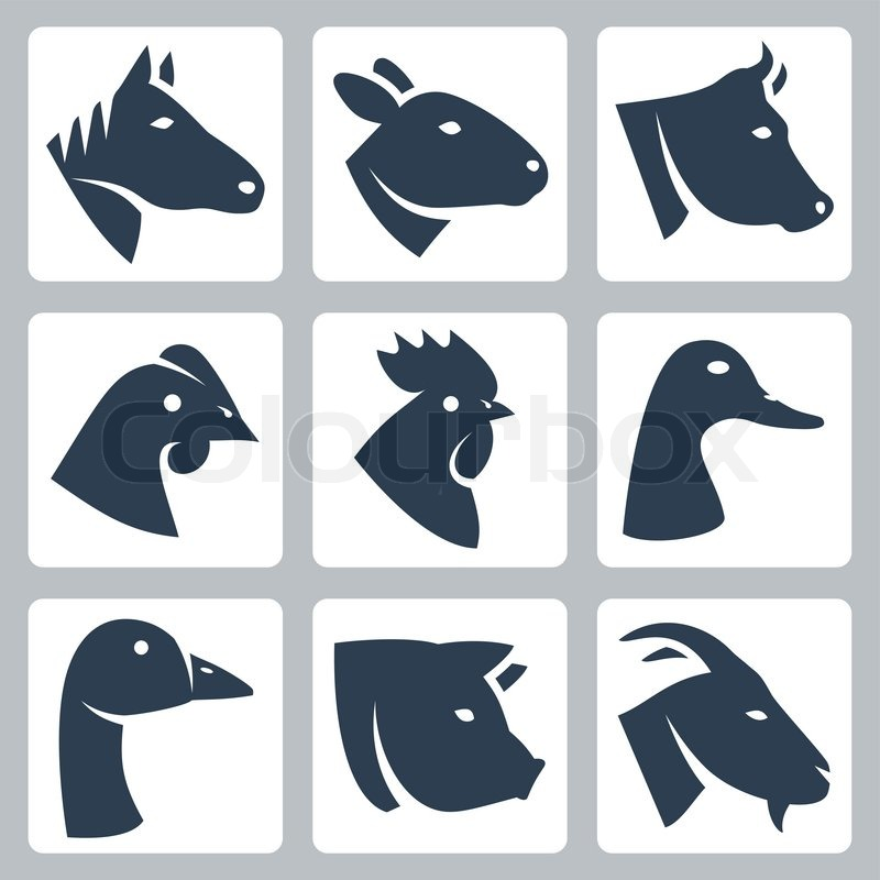 Vector domesticated animals icons set: horse, sheep, cow ...